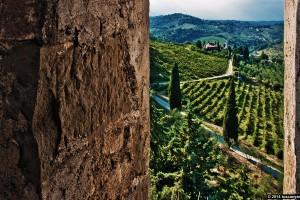 FIRENZE, VILLA Liberty e azienda vinicola CHIANTI CLASSICO - Winery near Florence with Villa
